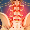 Relationship between fibromyalgia, chronic fatigue and abdominal and back pain.