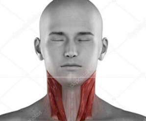 Fibromyalgia, Trigger Points in the Neck Cause a Wide Variety of Symptoms